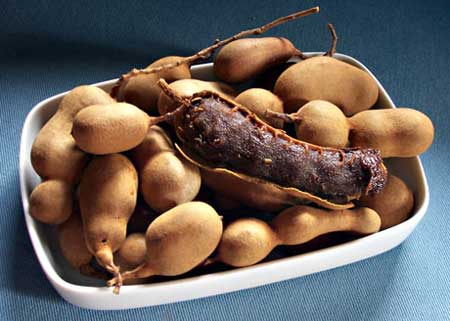 What-is-Tamarind